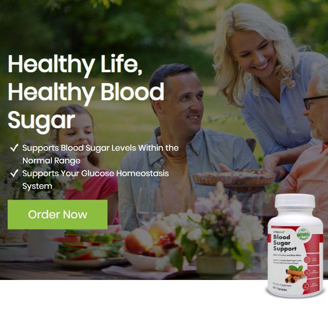 Blood Sugar Support Website Image